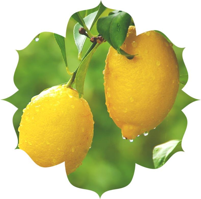 Lemon ingredient in skincare