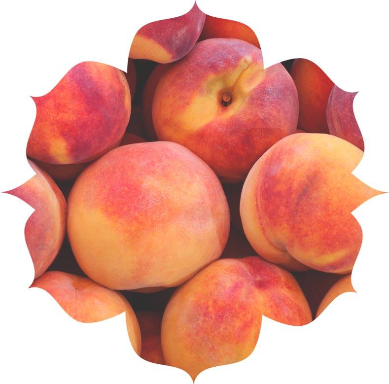 Peach seed powder ingredient in skincare