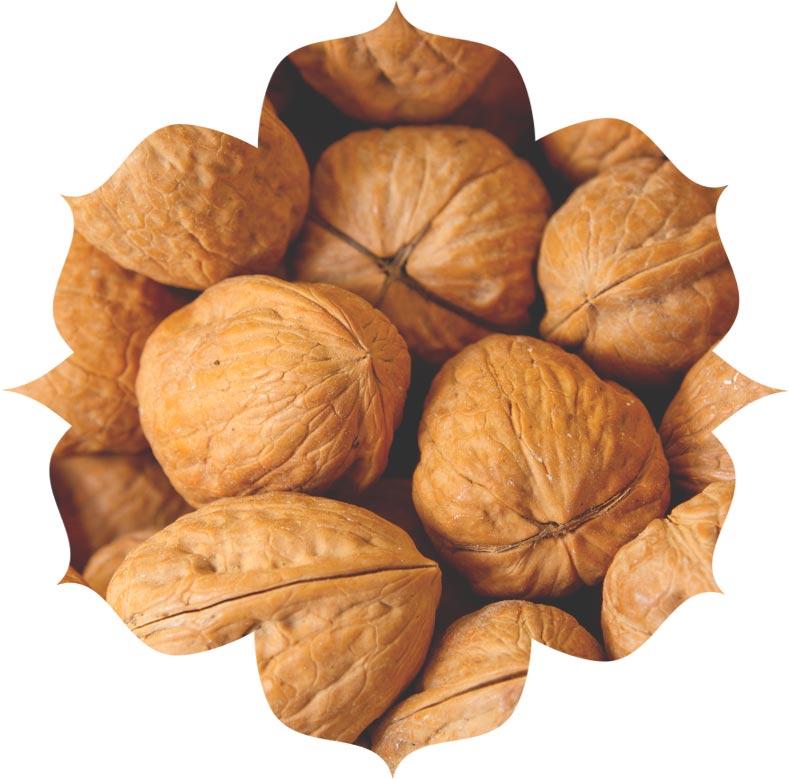 Walnut shell powder ingredient in skincare
